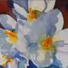 Carol Lynn Gilchrist_springblooms